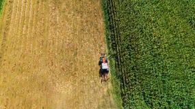 Oogst van hooi, tractor die roterende harken op landbouwgewassen gebruiken Luchtmening, hommelmening royalty-vrije stock foto