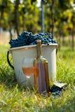 Oogst van wijnstok Royalty-vrije Stock Afbeelding
