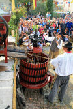 Oogstende druiven: festival van de druivenoogst in chusclan vil Royalty-vrije Stock Fotografie