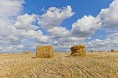 Oogstlandschap met strobalen onder gebieden in de herfst Stock Foto's