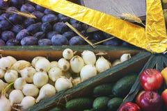 Oogstpruimen, uien, komkommers en appelen stock fotografie