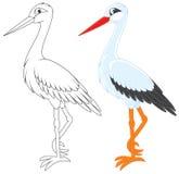 Ooievaar vector illustratie