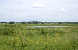 Ooijpolder nära Nijmegen i Nederländerna Arkivfoto