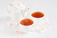 Oolong茶 库存图片