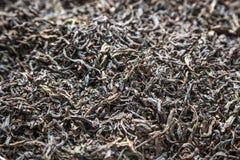 Oolong herbata Zdjęcia Stock