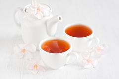 Oolong tea. In a scoop, caps and teapot with light rose rhododendron flowers Stock Images