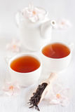 Oolong tea Stock Photos