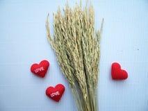 Oor van rijst en teken die hart geborduurde rode brievenliefde tonen Royalty-vrije Stock Fotografie