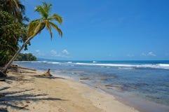 Oorspronkelijk Caraïbisch strand in Costa Rica royalty-vrije stock foto