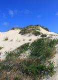 Oorspronkelijke zandduinen, Peniche, Leiria-district dichtbij Lissabon, Portugal royalty-vrije stock afbeelding