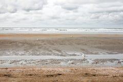 Oostduinkerke, западное побережье, Бельгия Стоковые Фото