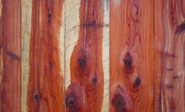 Oostelijk Rood Cedar Fence Royalty-vrije Stock Afbeelding