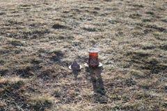 Oostelijke zwarte thee op achtergrond van glas de openluchtbergen Oostelijk theeconcept Armudu traditionele kop Groene backgrou v stock fotografie