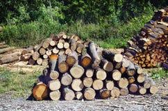Oostenrijk, Forest Industry royalty-vrije stock afbeelding