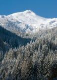 Oostenrijk   sneeuw berg royalty-vrije stock foto's