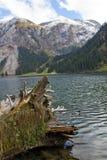 Oostenrijk, Tannheim-Vallei, Meer Vilsalp stock afbeeldingen