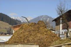 Oostenrijk, Tirol, mestheuvel stock foto