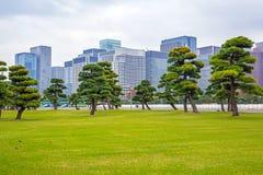 Oosters park in Tokyo royalty-vrije stock afbeelding