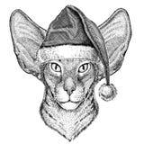 Oosterse kat met van het de hoeden Nieuwe jaar van afluisteraarkerstmis de vooravond Vrolijke Kerstmis en de gelukkige nieuwe vie vector illustratie