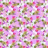 Oosterse pattern06 Stock Fotografie
