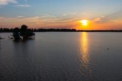 Oostvaardersplassen dal tramonto 1 Immagine Stock Libera da Diritti