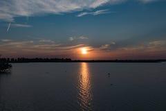 Oostvaardersplassen dal tramonto 5 Immagini Stock Libere da Diritti