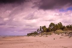 Oostzeekust in Letland Royalty-vrije Stock Afbeelding