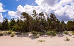 Oostzeekust in Letland Stock Foto's