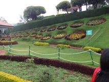 ooty的植物园的,印度美丽的草坪 免版税库存照片