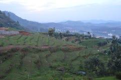 Ooty, Tamil Nadu India. Ooty landscape view, Ooty, Tamil Nadu India Stock Image