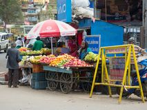 Local woman manage is outdoor stand market in Ooty. stock image