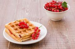 Opłatki z czerwonymi berries/opłatkami z czerwonymi jagodami w białym talerzu na drewnianym tle Selekcyjna ostrość fotografia stock