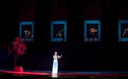 Opéra folklorique : Acacia Image libre de droits