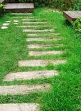 Opération en bois sur l'herbe verte photo libre de droits