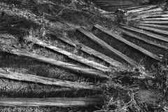 Opérations en bois photographie stock