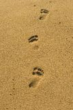 Opérations sur la plage Images libres de droits