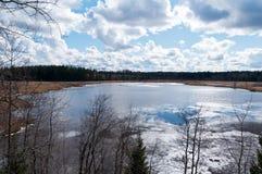 Opóźniona wiosna przy jeziorem Zdjęcie Royalty Free