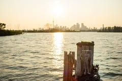 Opóźniony dnia widok w centrum Toronto od Tommy Thompson parka zdjęcia stock