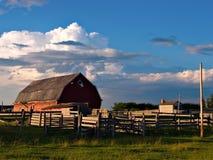 Opóźniony dnia gospodarstwo rolne zdjęcie royalty free