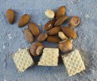 Opłatki z cacao dokrętkami i śmietanką obraz royalty free