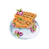 Opłatki z malinkami na talerzu pojedynczy białe tło Fotografia Stock