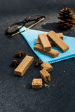 Opłatki z waniliowymi strąkami fotografia royalty free
