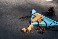 Opłatki z waniliowymi strąkami obrazy stock