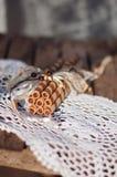 Opłatek rolki na koronkowej pielusze Zdjęcie Royalty Free