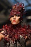 Op aurasjacheraar springen vu de zomer van 2012 modeshow op Stock Afbeeldingen
