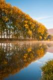 Op de Berounka-rivier in de ochtend stock foto