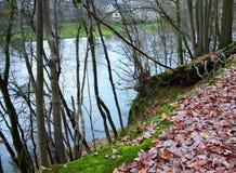 Op de bodem van de rivier royalty-vrije stock afbeeldingen