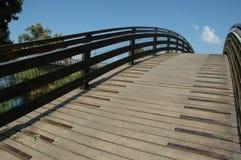 Op de brug Stock Foto's
