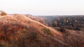 Op de Herfstsepia en de oranje heuvels met kleine struiken Royalty-vrije Stock Fotografie