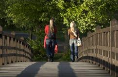 Op de houten brug Royalty-vrije Stock Foto